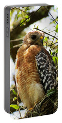 Hawk Taking A Rest On A Tree In Lakeland Florida Portable Battery Charger