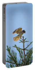 Hawk With Regal Landing Portable Battery Charger