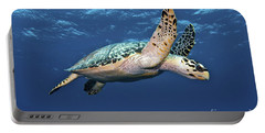 Hawksbill Sea Turtle In Mid-water Portable Battery Charger by Karen Doody