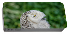 Head Of Snowy Owl Portable Battery Charger by Patricia Hofmeester
