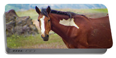 Head Shot Of A Wild Paint Horse Portable Battery Charger