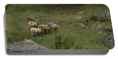 Hearding Goats Portable Battery Charger