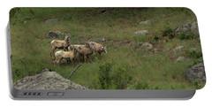 Hearding Goats Portable Battery Charger