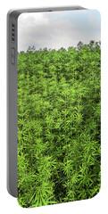 Hemp Plantation Portable Battery Charger