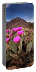 Henderson Canyon Beavertail Portable Battery Charger
