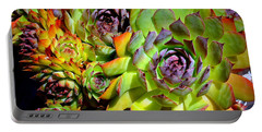 Hens 'n Chicks Portable Battery Charger