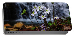 Portable Battery Charger featuring the photograph Hepatica And Waterfall by Thomas R Fletcher