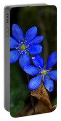 Hepatica Nobilis Portable Battery Charger
