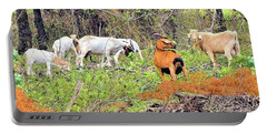 Portable Battery Charger featuring the photograph Herd Of Goats In Osage County by Janette Boyd