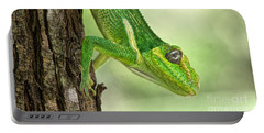 Portable Battery Charger featuring the photograph Here's Looking At You by Judy Kay