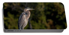 Heron At Sunrise Portable Battery Charger by Martina Thompson