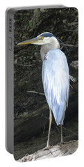 Portable Battery Charger featuring the photograph Heron In The Woods by Kathy Kelly