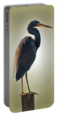 Heron On Post Portable Battery Charger