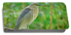 Heron On The Edge Portable Battery Charger