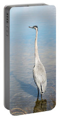 Heron's Watch Portable Battery Charger