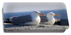 Herring Gulls, Nova Scotia Portable Battery Charger