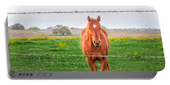 Portable Battery Charger featuring the photograph Hey You - Ya You by Melinda Ledsome