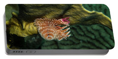 Portable Battery Charger featuring the photograph Hidden Christmastree Worm by Jean Noren