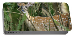 Hiding Fawn Portable Battery Charger
