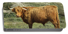 Highland Bull In The Noordhollandse Duinreservaat Portable Battery Charger