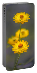 Hillflowers Portable Battery Charger