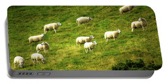 Hillside Pasture Portable Battery Charger