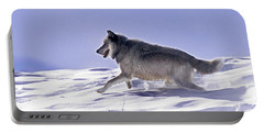 His Majesty Wolf 21m Portable Battery Charger