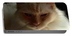 Honey, My Ragdoll Cat Portable Battery Charger by Patricia E Sundik