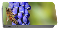 Honeybee On Single Grape Hyacinth Portable Battery Charger