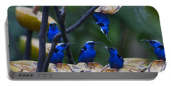 Honeycreeper Portable Battery Charger by Betsy Knapp