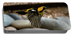 Portable Battery Charger featuring the photograph Hooded Oriole H37 by Mark Myhaver
