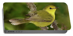 Hooded Warbler Female Portable Battery Charger
