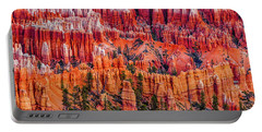 Hoodoo Forest Portable Battery Charger by David Cote
