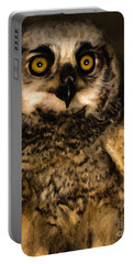 Hooty Portable Battery Charger
