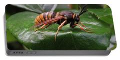 Hornet Moth Portable Battery Charger