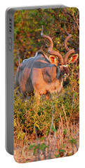 Horns Walking Portable Battery Charger