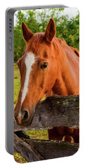 Horse Friends Portable Battery Charger