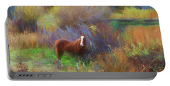 Horse Of Many Colors Portable Battery Charger