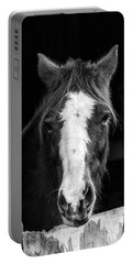 Horse Looking Through Stall Portable Battery Charger