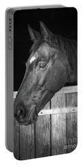 Horse Portrait Portable Battery Charger by Delphimages Photo Creations