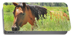 Horse Portrait Portable Battery Charger by Marilyn Diaz