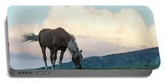 Horse - Rila Big Sky Portable Battery Charger