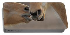 Horse Whisperer  Portable Battery Charger