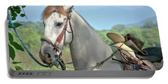 Portable Battery Charger featuring the photograph Horse With No Name by Jim Walls PhotoArtist