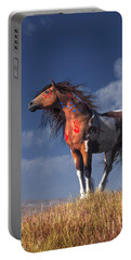 Horse With War Paint Portable Battery Charger