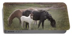 Horses And Colt  Portable Battery Charger