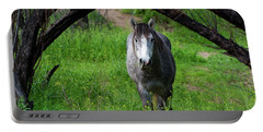 Horse's Arch Portable Battery Charger