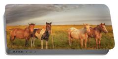 Horses At Kalae Portable Battery Charger
