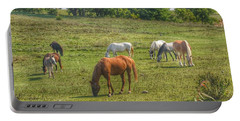 1003 - Horses In A Pasture I Portable Battery Charger