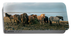 Portable Battery Charger featuring the photograph Horses In Iceland by Dubi Roman
